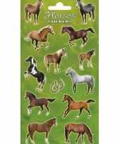 Feest 2x stickervelllen met grote paarden prints