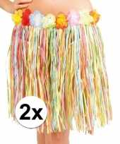 Feest 2x stuks hawaii rokjes gekleurd 45 cm voor dames