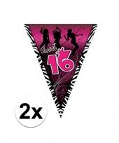 Feest 2x sweet 16 slinger zwart roze 5 meter