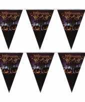 Feest 2x vlaggenlijnen slingers halloween party 250 cm