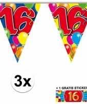 Feest 3 gekleurde slingers 16 jaar met sticker