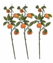 Feest 3x groen oranje citrus sinensis sinaasappelboom kunsttak