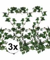 Feest 3x klimop slinger hedera helix 180 cm
