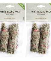 Feest 4x witte salie sticks