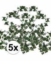 Feest 5x klimop slinger hedera helix 180 cm