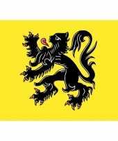 Feest 5x vlaanderen vlag stickers 7 5 x 10 cm