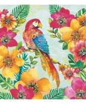 Feest 60x papegaai thema servetten 33 x 33 cm
