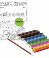 Feest 6x knutsel papieren maskers om in te kleuren incl potloden