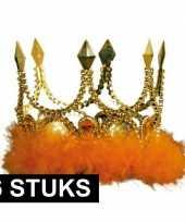Feest 6x verkleed kroon goud met oranje stenen en veren