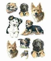 Feest 81x honden puppy dieren stickers
