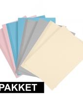Feest 8x a4 hobby karton lichtblauw grijs lichtroze beige