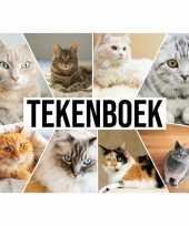 Feest a4 katten waaier schetsboek tekenboek kleurboek schetsblok wit papier
