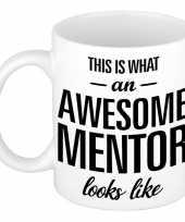 Feest awesome mentor cadeau mok beker voor leraar 300 ml