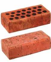 Feest baksteen kussen 25 x 12 cm