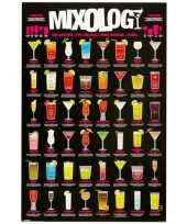 Feest bar poster met cocktails
