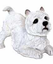 Feest beeldje west highland terrier wit 36 cm