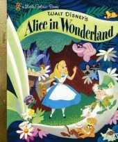 Feest boek alice in wonderland voor kinderen