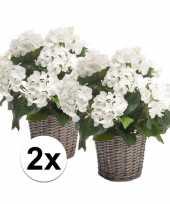 Feest buiten kunstplant witte hortensia 45 cm 2 stuks