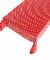 Feest buiten tafelkleed zeil polkadot rood 140 x 240 cm