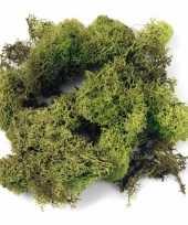 Feest deco mos lichtgroen 200 gram