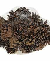 Feest decoratie dennenappels bruin 5 cm