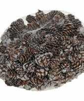 Feest decoratie dennenappels bruin sneeuw 3 cm