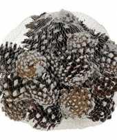Feest decoratie dennenappels bruin sneeuw 5 cm