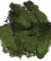 Feest decoratie mos donkergroen 50 gram