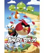 Feest decoratie poster angry birds