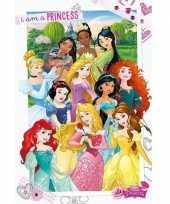 Feest decoratie poster prinsessen 61 x 91 5 cm