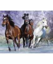 Feest decoratie poster van paarden