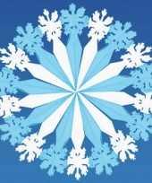 Feest decoratie sneeuwvlok