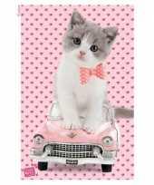 Feest dieren poster katje op cadillac