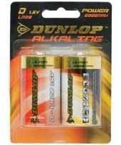 Feest dunlop alkaline batterijen lr20 d 2 stuks