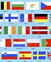 Feest europese landen vlaggen pakket