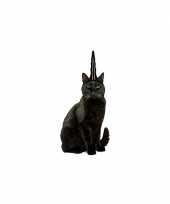 Feest evil katten eenhoorn hoorn