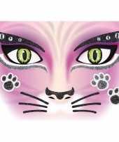 Feest gezicht stickers kat 1 vel