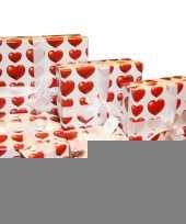 Feest goedmakertje hartjes verpakking 16 cm
