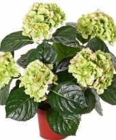 Feest groen rozee hortensia kunstplant 36 cm