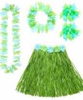 Feest groene hawaii verkleedset voor dames