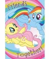 Feest grote deurposter van my little pony