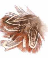 Feest haarveertjes bruin
