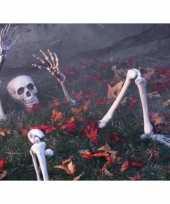 Feest halloween botten decoratie