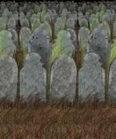 Feest halloween scenesetter begraafplaats