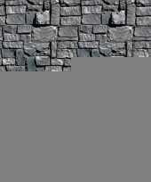 Feest halloween scenesetter stenen muur