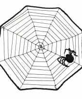 Feest halloween spinnenweb 40 x 40 cm