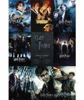 Feest harry potter film poster 61 x 91 cm