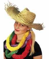 Feest hawaii stro hoed