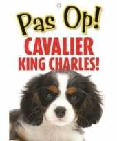 Feest honden waakbord pas op cavalier king charles 21 x 15 cm