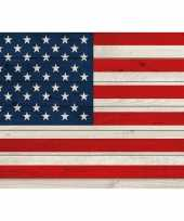 Feest horizontale vlag poster usa 84 cm